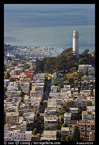 View from above of Telegraph Hill and Coit Tower, late afteroon. San Francisco, California, USA (color)