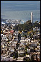 View from above of Telegraph Hill and Coit Tower, late afteroon. San Francisco, California, USA