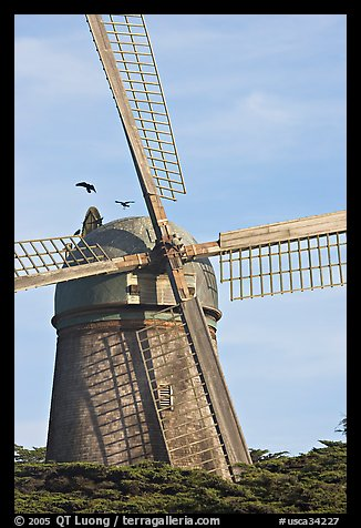 Dutch Mill. San Francisco, California, USA (color)