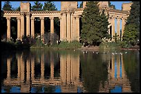 Colonades and reflection, Palace of Fine Arts, morning. San Francisco, California, USA