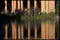 Reflection of colonade, Palace of Fine Arts, morning. San Francisco, California, USA