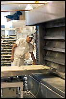 Baker loading loafs of bread into oven. San Francisco, California, USA ( color)