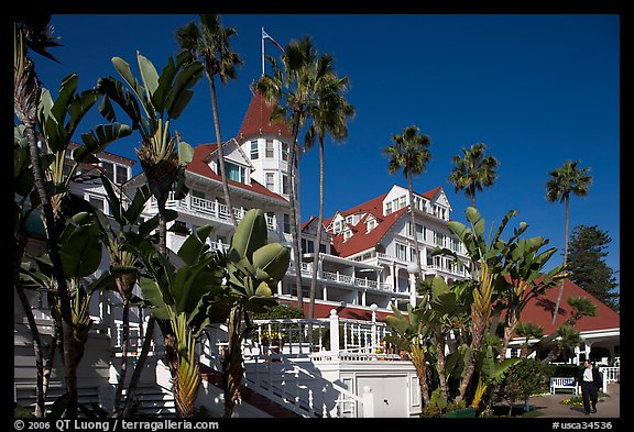 Del Coronado hotel framed by palm trees. San Diego, California, USA (color)