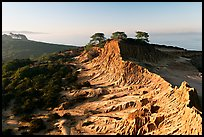 Eroded sandstone cliffs of Broken Hill,  Torrey Pines State Preserve. La Jolla, San Diego, California, USA (color)