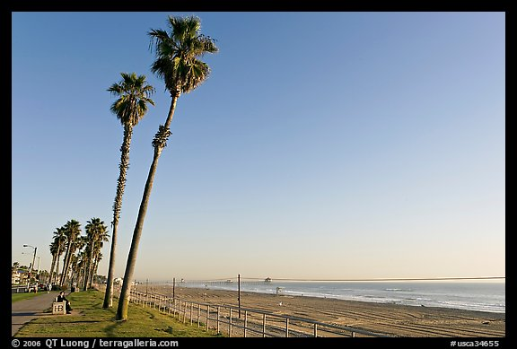 Tall palm trees, waterfront promenade, and beach. Huntington Beach, Orange County, California, USA (color)
