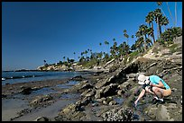Women checking out a tidepool. Laguna Beach, Orange County, California, USA ( color)