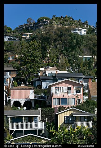 Houses on verdant hillside. Laguna Beach, Orange County, California, USA (color)