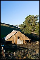 Old wooden barn. California, USA (color)