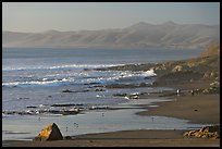 Cayucos State Beach, late afternoon. Morro Bay, USA ( color)