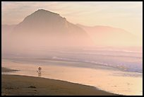 Couple and dog reflected in wet sand, with Morro Rock behind, sunset. Morro Bay, USA (color)