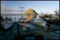 Harbor and Morro Rock, early morning. Morro Bay, USA (color)