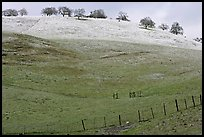 Hills with top covered with fresh snow, Mount Hamilton Range foothills. San Jose, California, USA