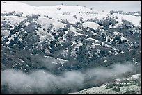 Snow and fog on Mount Hamilton Range. San Jose, California, USA