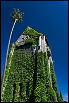 Ivy-covered Tower Hall, San Jose State University. San Jose, California, USA ( color)
