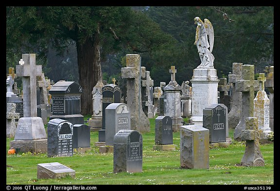 Variety of headstones, Colma. California, USA (color)