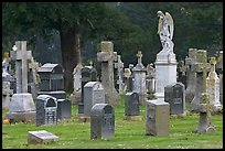 Variety of headstones, Colma. California, USA ( color)