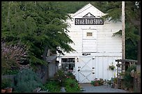 White-facaded store tucked in trees, Pescadero. San Mateo County, California, USA ( color)