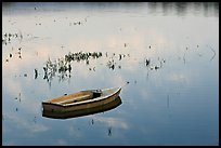 Rowboat in Lake Lagunata. Stanford University, California, USA ( color)