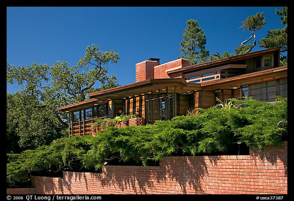 Facade and trees, Frank Lloyd Wright Honeycomb House. Stanford University, California, USA (color)