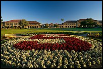 Stanford University S logo in flowers and main Quad. Stanford University, California, USA (color)
