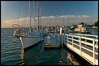 Yachts in Port of Redwood, late afternoon. Redwood City,  California, USA ( color)