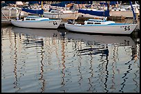 Marina reflections. Redwood City,  California, USA (color)