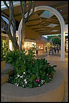 Flowers and arches, Stanford Shopping Mall, dusk. Stanford University, California, USA ( color)