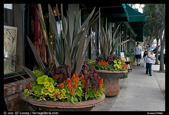 Flowers on Main Street, with family strolling by. Half Moon Bay, California, USA (color)