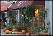 Storefronts decorated with large pumpkins. Half Moon Bay, California, USA ( color)