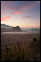 Pasture with fog at sunset. San Mateo County, California, USA