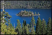 Forested slopes and Fannette Island, Emerald Bay, California. USA