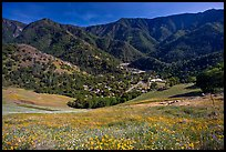 El Portal, nested below hills covered with spring flowers. El Portal, California, USA (color)