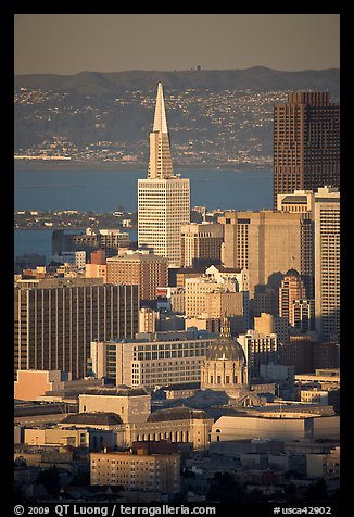 City Hall and Transamerica Pyramid, late afternoon. San Francisco, California, USA (color)
