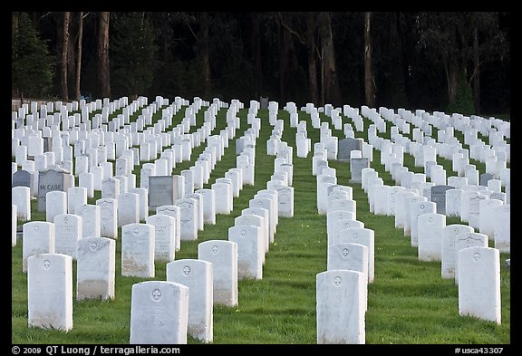 Rows of headstones, San Francisco National Cemetery, Presidio. San Francisco, California, USA (color)