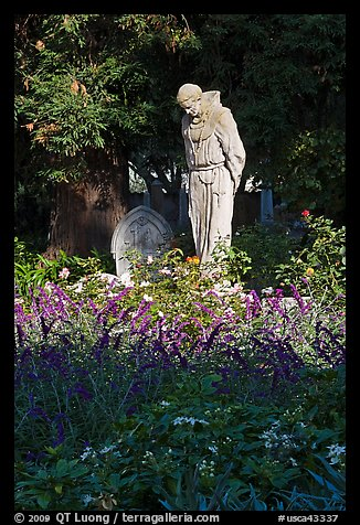 Father Statue and flowers, Mission Dolores garden. San Francisco, California, USA (color)