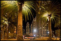 Palm trees and Embarcadero Center at night. San Francisco, California, USA (color)