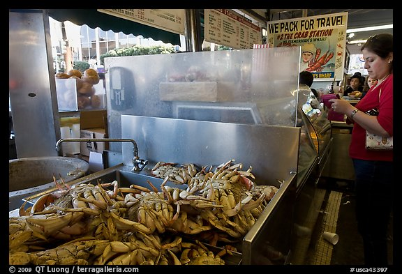 Crabs at outdoor food vending booths, Fishermans wharf. San Francisco, California, USA (color)