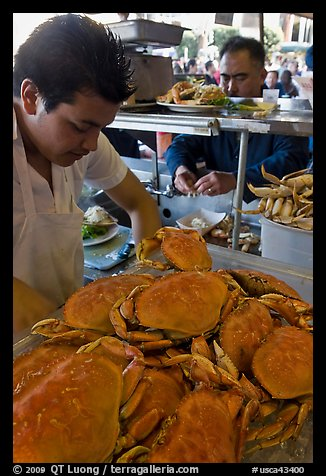 Man preparing crabs, Fishermans wharf. San Francisco, California, USA (color)