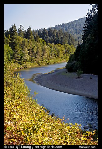 Eel River near Avenue of the Giants. California, USA (color)