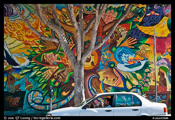 Man sitting in car, mural, and tree, Mission District. San Francisco, California, USA (color)
