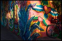 Bicycle and last light on mural, Mission District. San Francisco, California, USA (color)