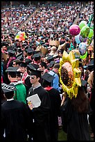 Graduating students celebrating commencement. Stanford University, California, USA ( color)