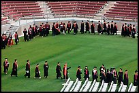 Class of 2009 lines up to seat for commencement. Stanford University, California, USA ( color)