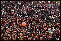 Mass of graduates in academic robes. Stanford University, California, USA ( color)