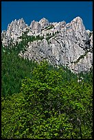 Limestone cliffs, Castle Crags State Park. California, USA (color)