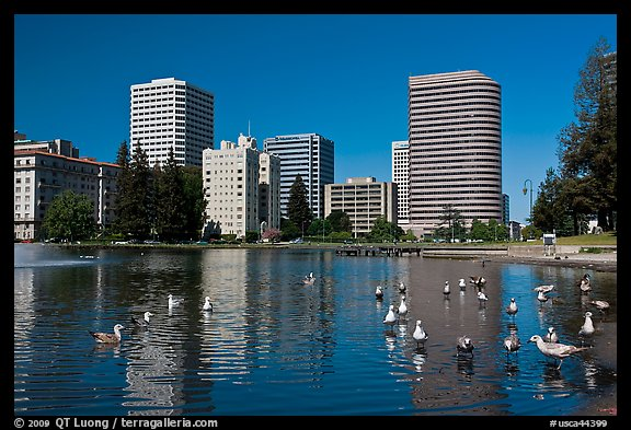 Lake Merritt, first US wildlife refuge, designated in 1870. Oakland, California, USA (color)
