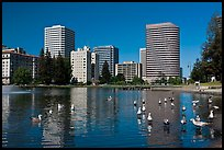 Lake Merritt, first US wildlife refuge, designated in 1870. Oakland, California, USA ( color)