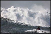 Jet ski dwarfed by huge breaking wave. Half Moon Bay, California, USA ( color)