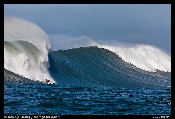 Picture/Photo: Surfing big wave at the Mavericks  Half Moon