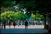 Students walking on Sproul Plazza. Berkeley, California, USA ( color)